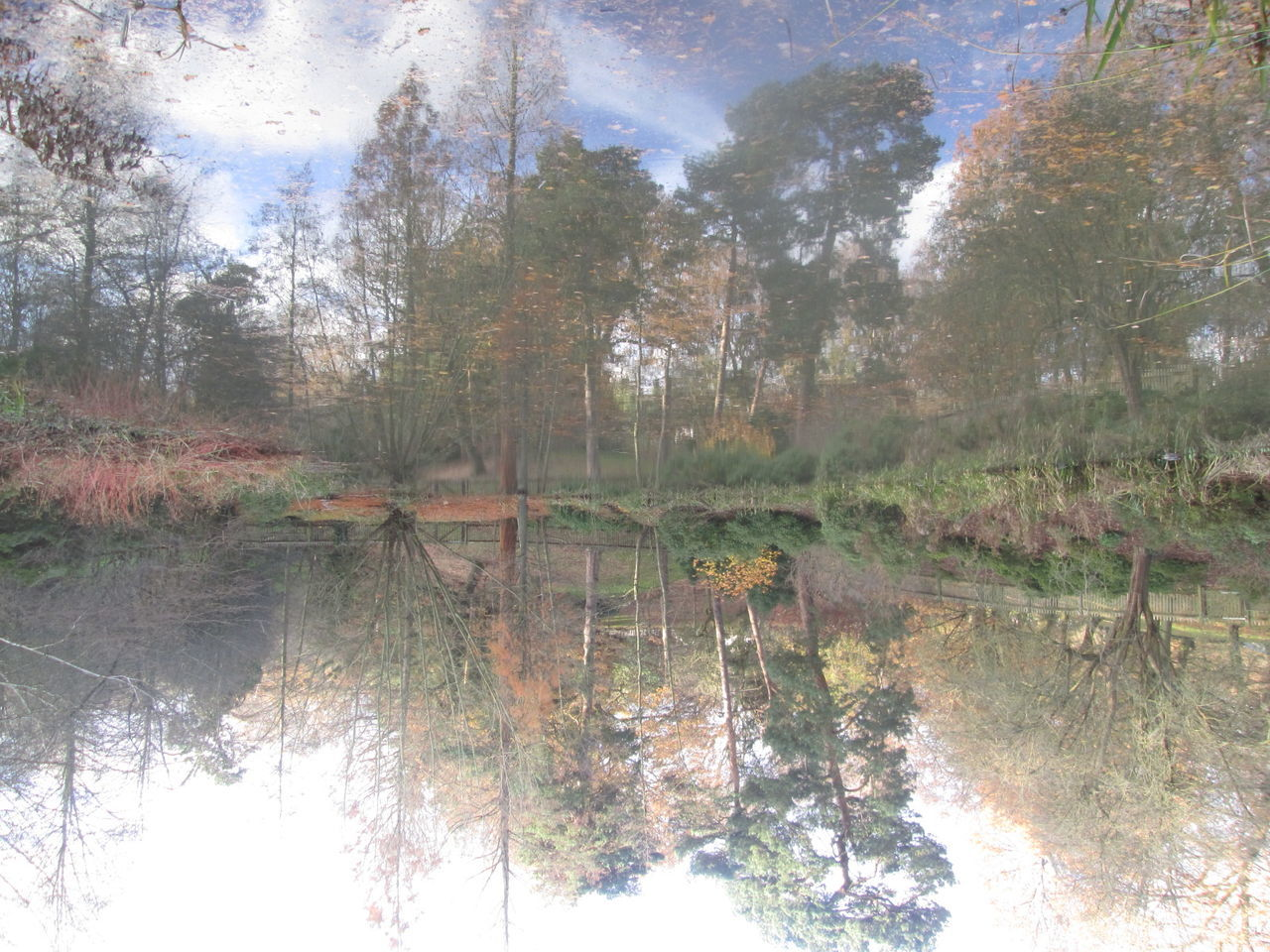 Abstract Autumn Beauty In Nature Favourite Places Hampstead Heath Illusion Photography London No People Nofilternoedit Reflection Tranquil Scene Tranquility