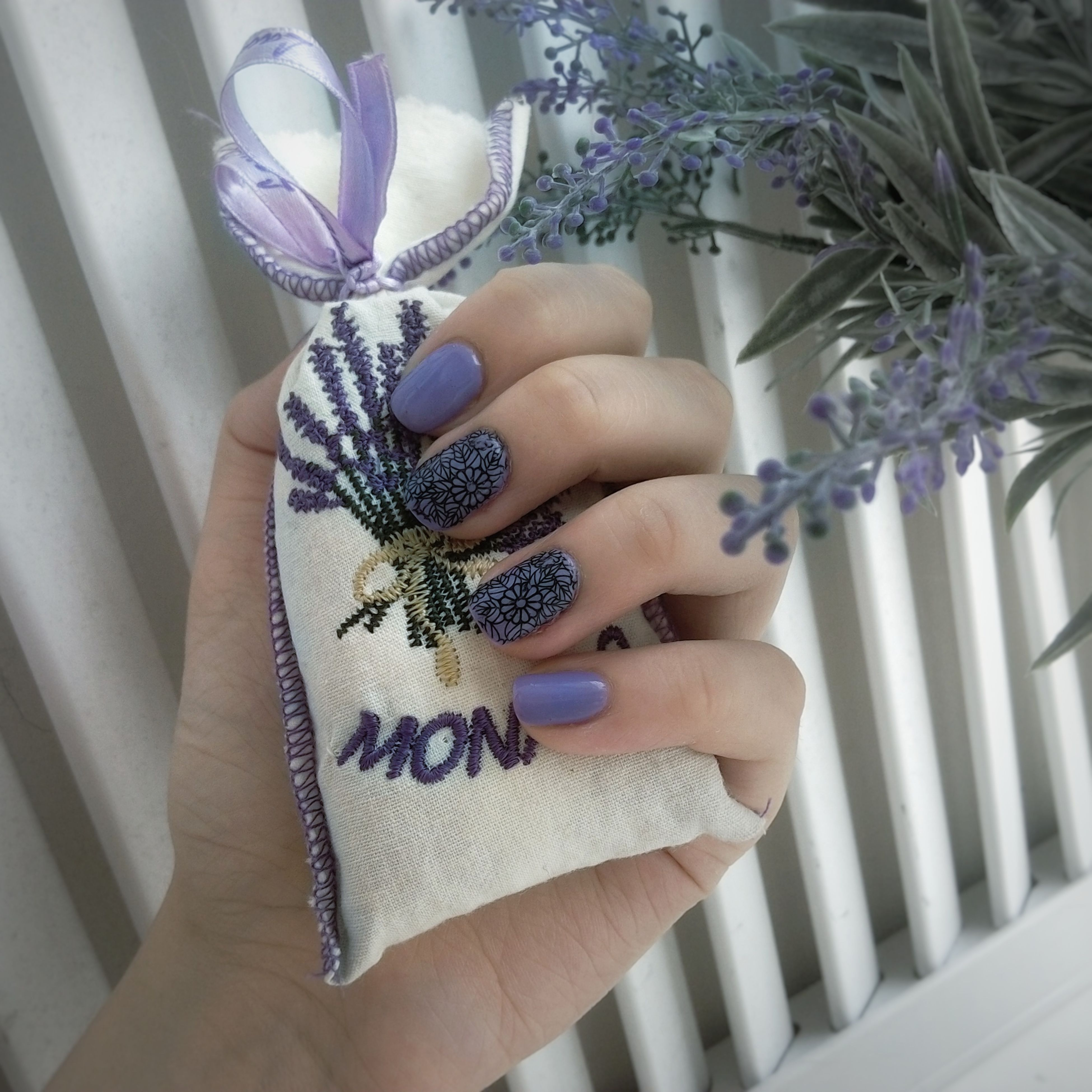 human hand, one person, purple, lifestyles, human body part, real people, leisure activity, flower, women, indoors, close-up, fragility, people, adult, day, adults only
