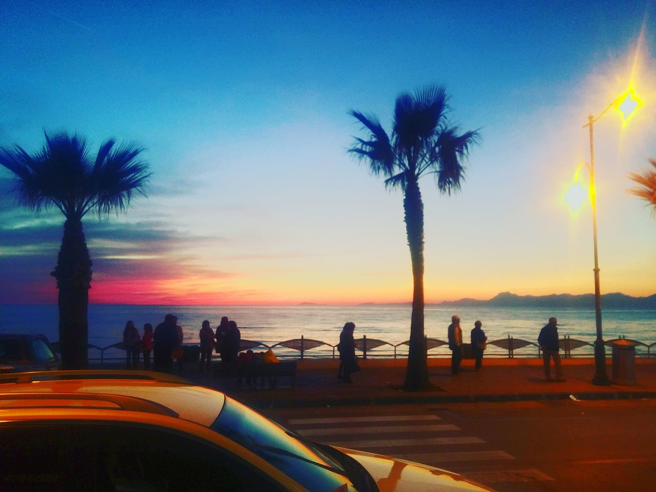 palm tree, sunset, silhouette, sea, tree, beach, scenics, sky, nature, water, beauty in nature, leisure activity, large group of people, real people, outdoors, men, vacations, lifestyles, women, horizon over water, day, people