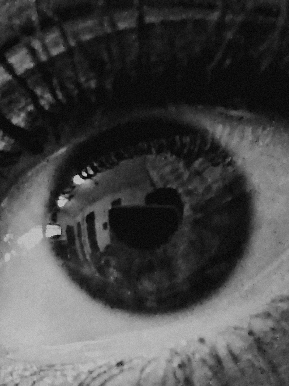 El brillo de sus ojos Miprincesa