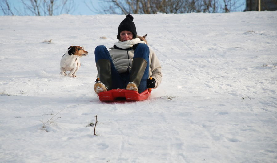 Jack Russell Sledging Animal Themes Cold Temperature Day Dog Dog In Flight Domestic Animals Friendship Front View Fun Happiness Motion Nature One Animal Outdoors Pets Playing Real People Sitting Smiling Snow Warm Clothing Winter Young Adult
