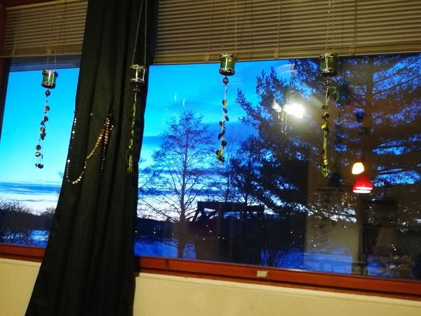 Tree Window Curtain No People Sky Outdoors Day Nature Finland_photolovers Illuminated Finland Night Cruise Liner Cruise Ships Event Modern Building Exterior Cruise Ship Photos Built Structure Helsinki Finland Cruising Around Politics And Government Business Finance And Industry Architecture Domestic Life