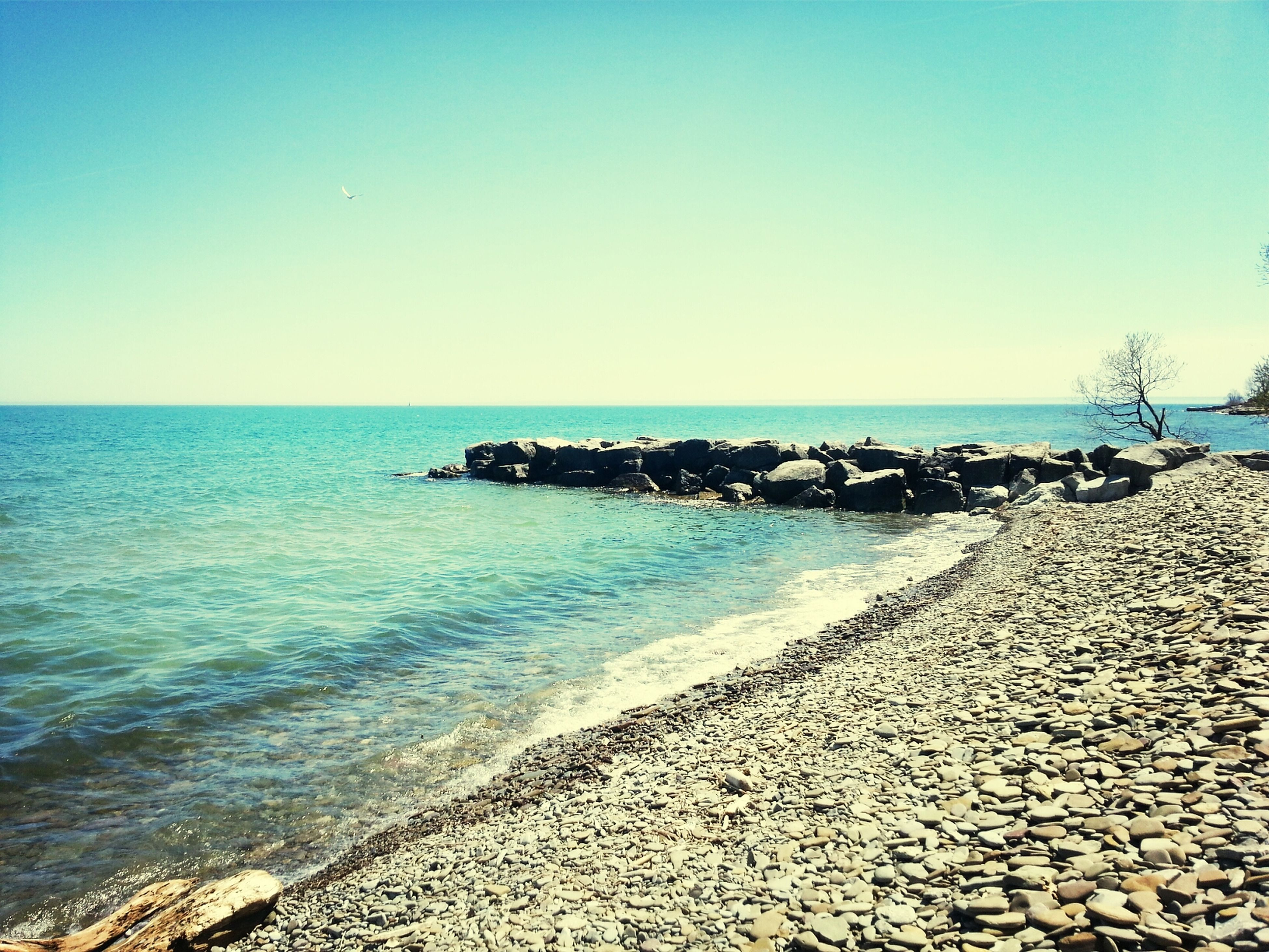 sea, horizon over water, water, clear sky, beach, blue, copy space, tranquil scene, tranquility, scenics, shore, beauty in nature, nature, sand, rock - object, idyllic, coastline, day, outdoors, sunlight