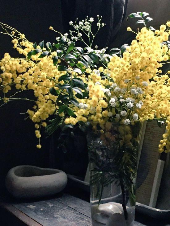 HappySanValentineDay Valentine's Day  Valentine Flowers EyeEmBestPics FlorsCarolina Barcelonalove Barcelona Love EnergySupportBcn Qué no te falte el AMOR ni HOY ni ningún DÍA!! #amor 💞#love 💓#amore 💕#amour 💘 #felizsanvalentin #feliçsantvalenti #happysanvalentine #felizdíadelamor #happyloveday #happylove #flowers #mimosa de @florscarolinabcn #florscarolina #larambla #friendship #homedecorating #homedecor #homelove #happyday #myfriends #HappySanValentineDay 💝 #febrero2017 Feliz día para tod@sos!!! @energysupport 👉🏻Photo Credit: #energysupportbcn #barcelona #catalonia #spain #europe #gracies #gracias #thankyou