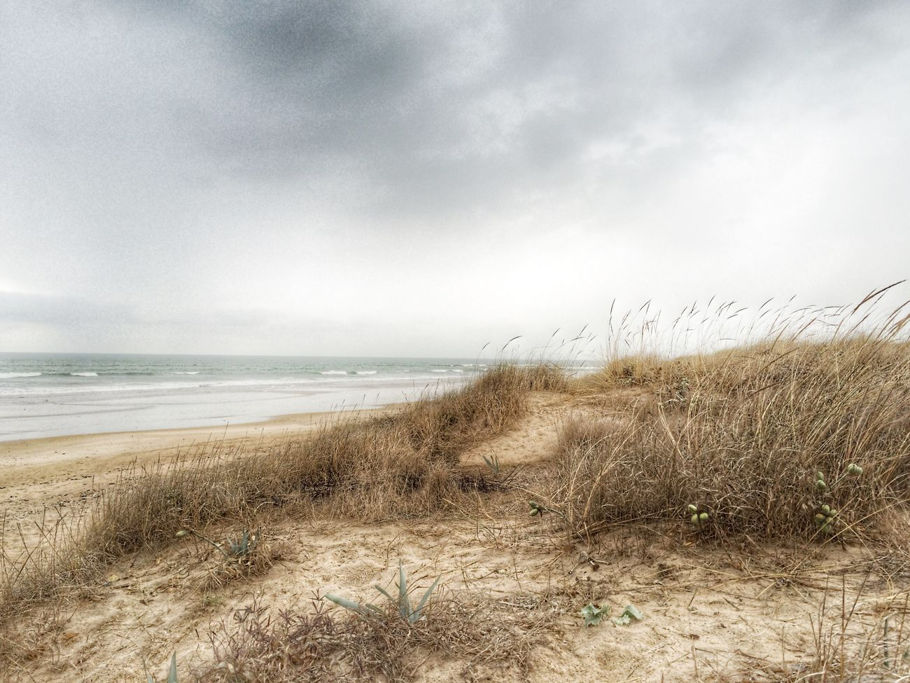 Grises Clouds And Sky Sea Landscape Nature_collection AMPt_community EyeEm Best Edits EyeEm Best Shots Landscape_Collection