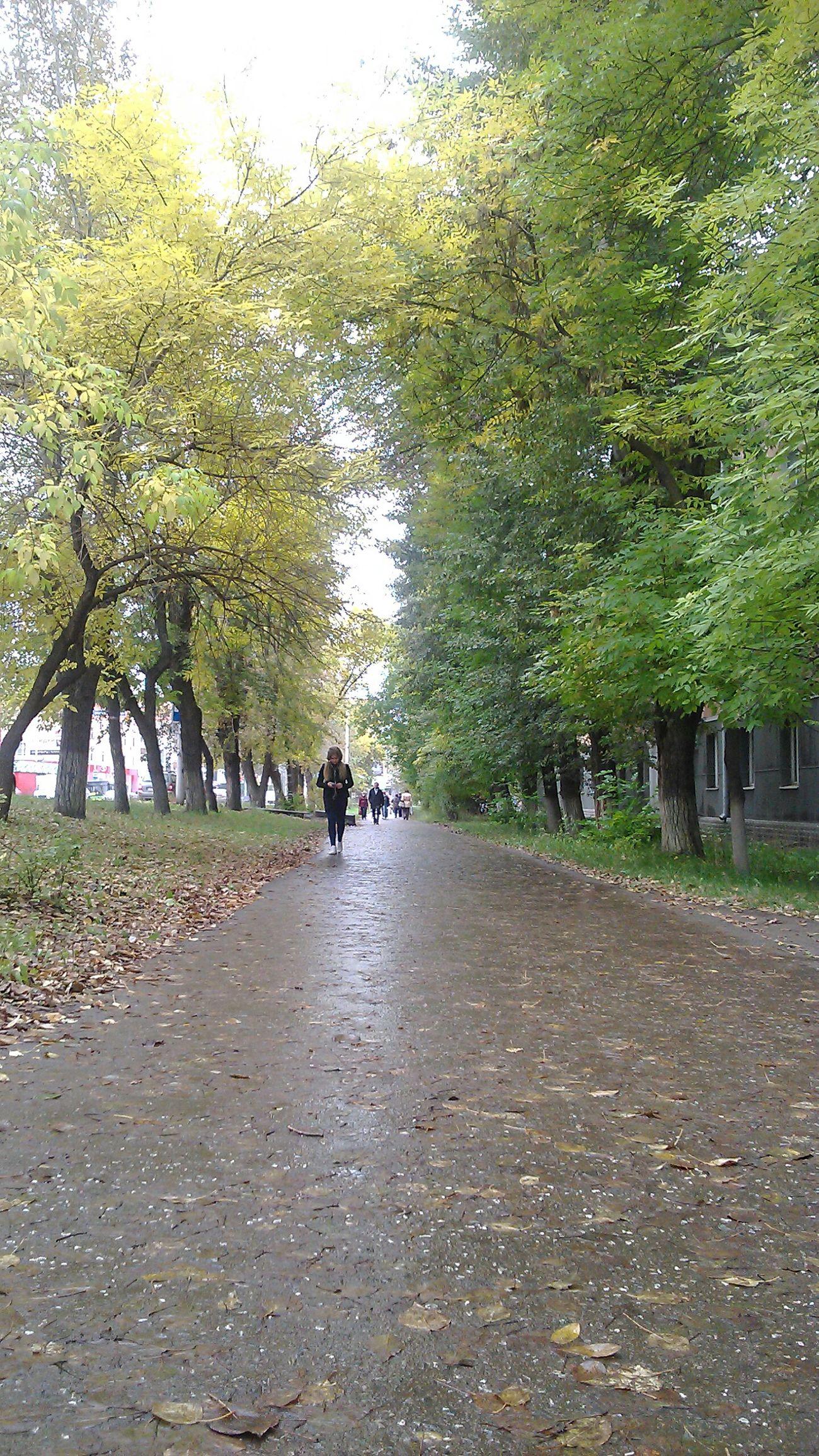 В городе осень Perm' Пермь мира102 Аллея