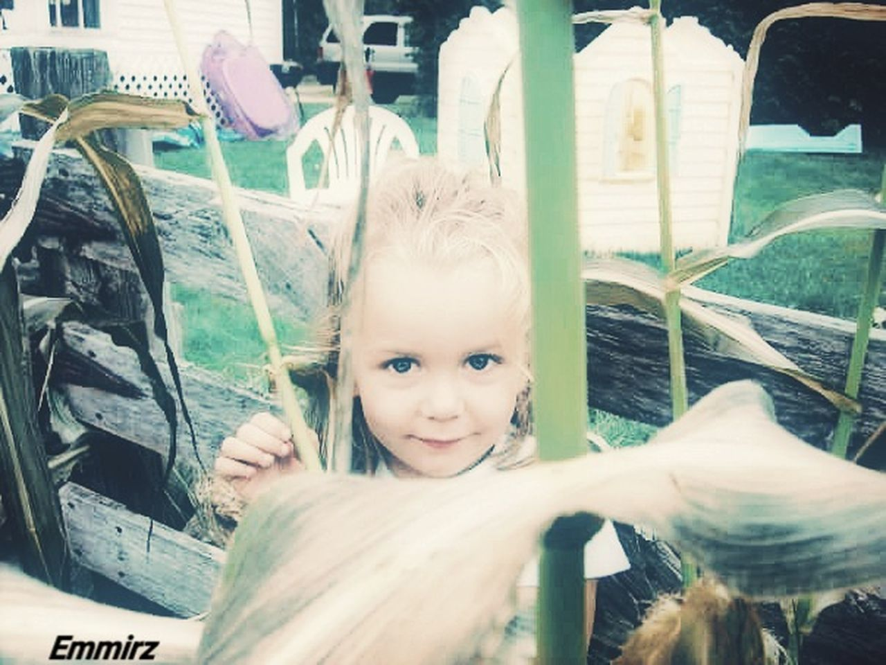 Mygirl♥ Country Living Growing Food Growing Vegtables Blond Hair Childhood Corn On The Cob Peek A Boo Wooden Fence
