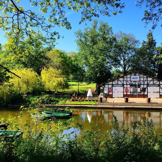 Cheltenham Pittville Park Lake Nature Boat Landscape Tree Outdoor Pond