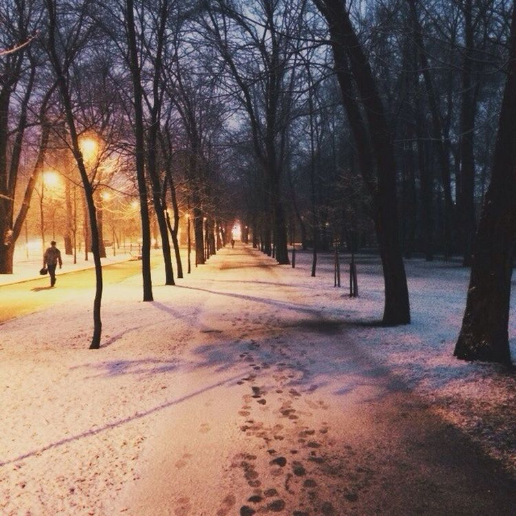 Vscocam VSCO Vscorussia Russia snow winter pushkin winter