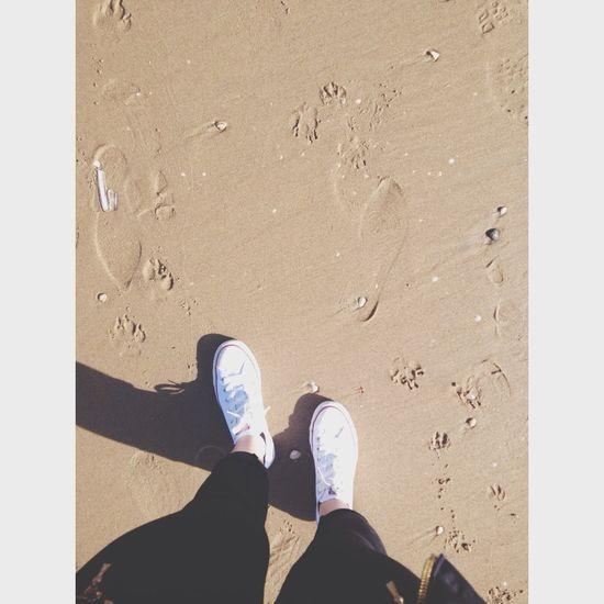 on the beach. Beach Thenetherlands Timeago