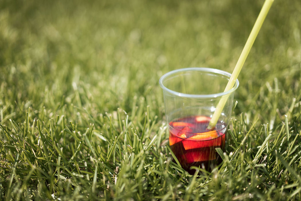 Sangria! Grass No People Day Nature Outdoors Close-up Freshness Drink Food And Drink Plastic Cup Green Live For The Story BYOPaper!