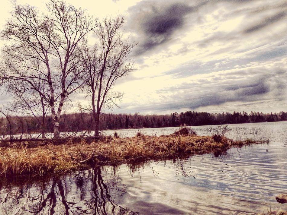 Water Reflections Beautiful Day Lakeshore Lake LakeReflection