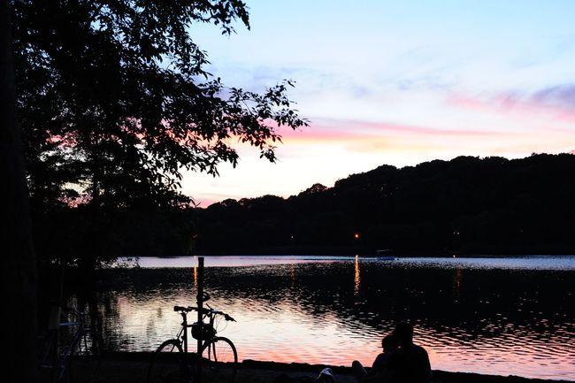 Digital Prospect Park Brookyn NYC New York Nature Park Sunset Pink Sky