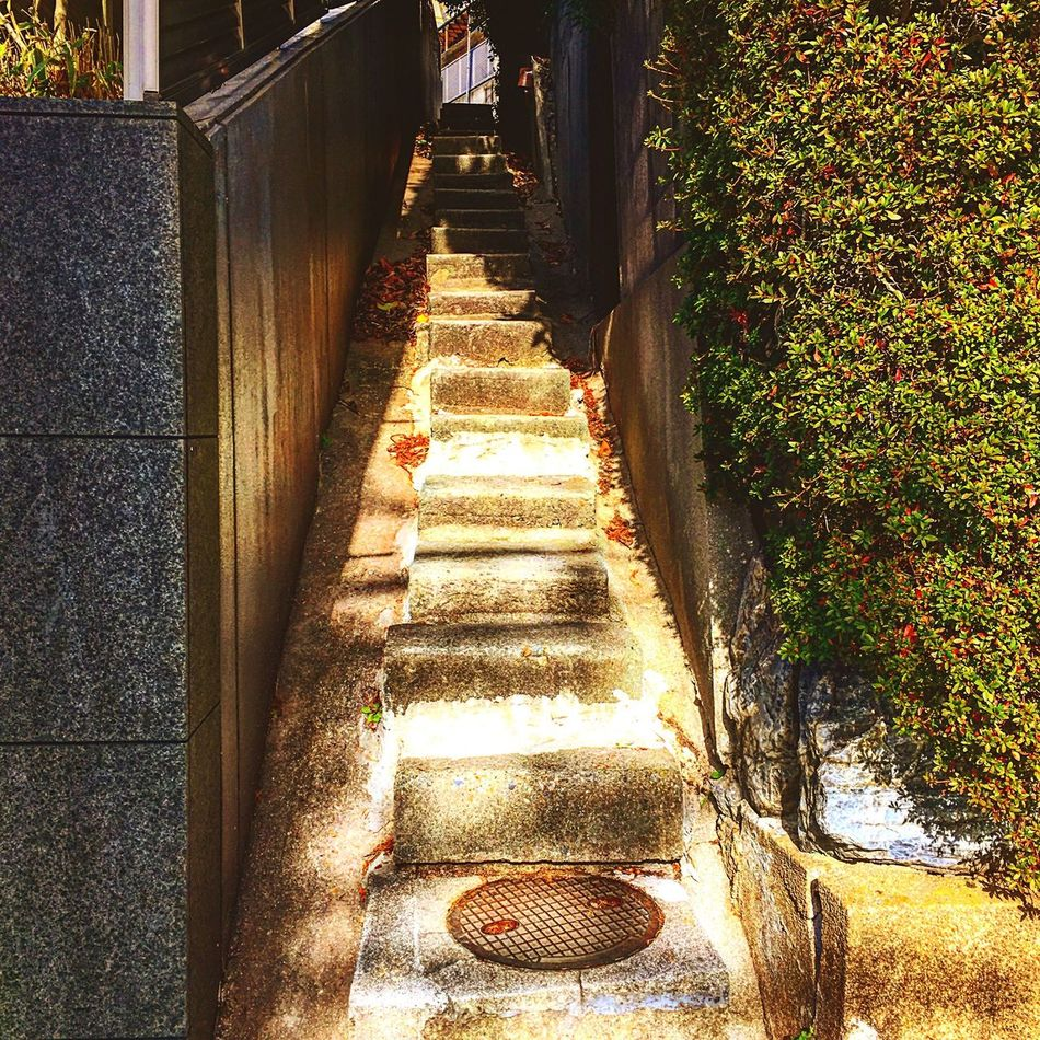 Trail EyeEn Porto Lateautumn