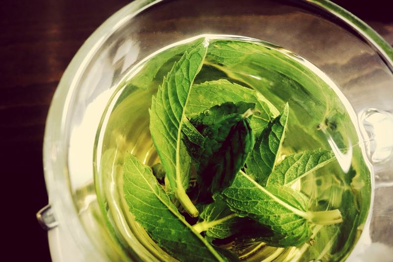 Tea Fresh Mint Tea Mint Food