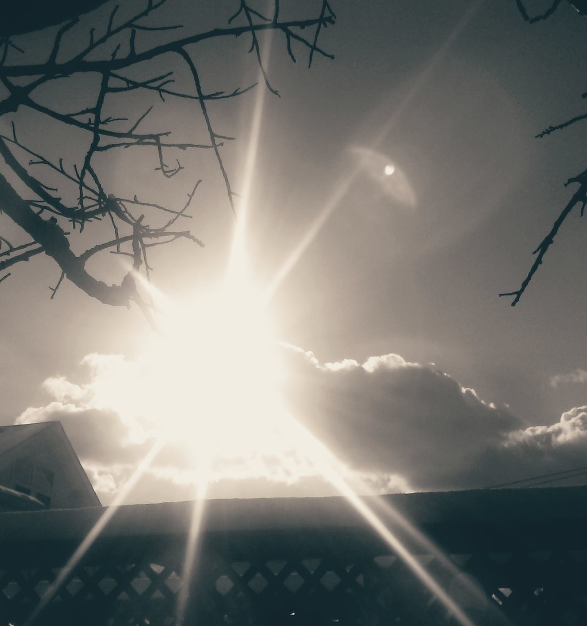 sun, lens flare, sunbeam, sunlight, beauty in nature, sky, nature, outdoors, no people, sunset, scenics, low angle view, day, tree, close-up