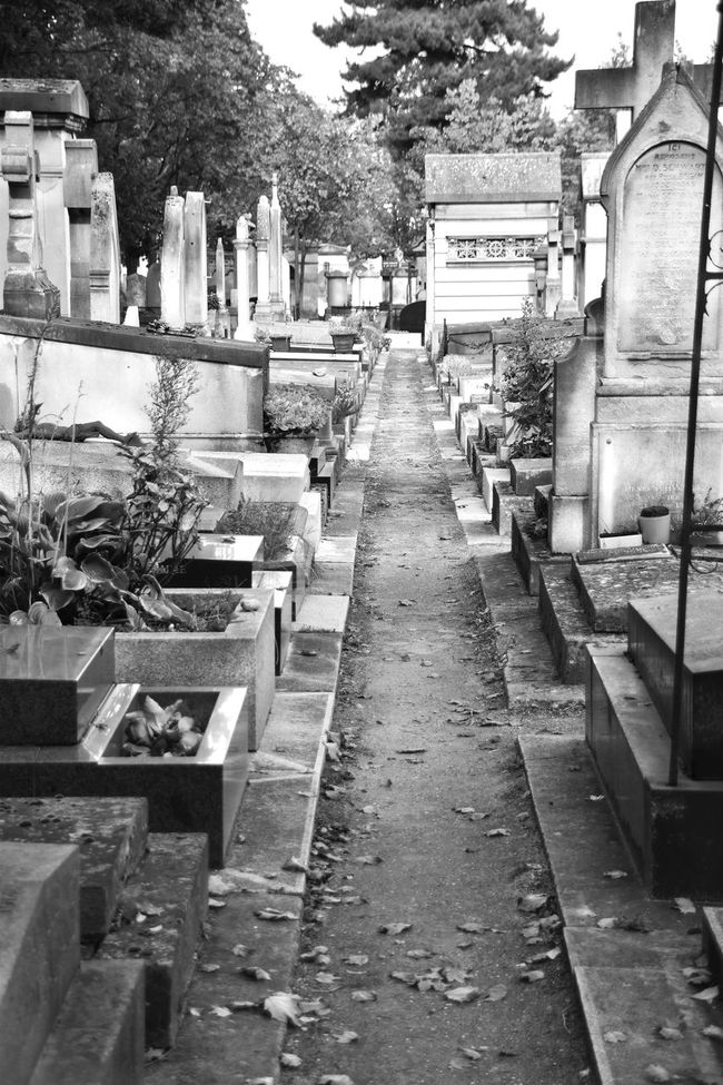 Black Cemetery Cemetery Photography Cemetery_shots Check This Out Day Diminishing Perspective Eye For Photography Eye4photography  EyeEm Best Shots EyeEm Best Shots - Black + White EyeEm Gallery EyeEmBestPics Eyeemphotography Footpath Grave Graveyard Graveyard Beauty Hello World Long No People Outdoors Plant Stone Material The Way Forward