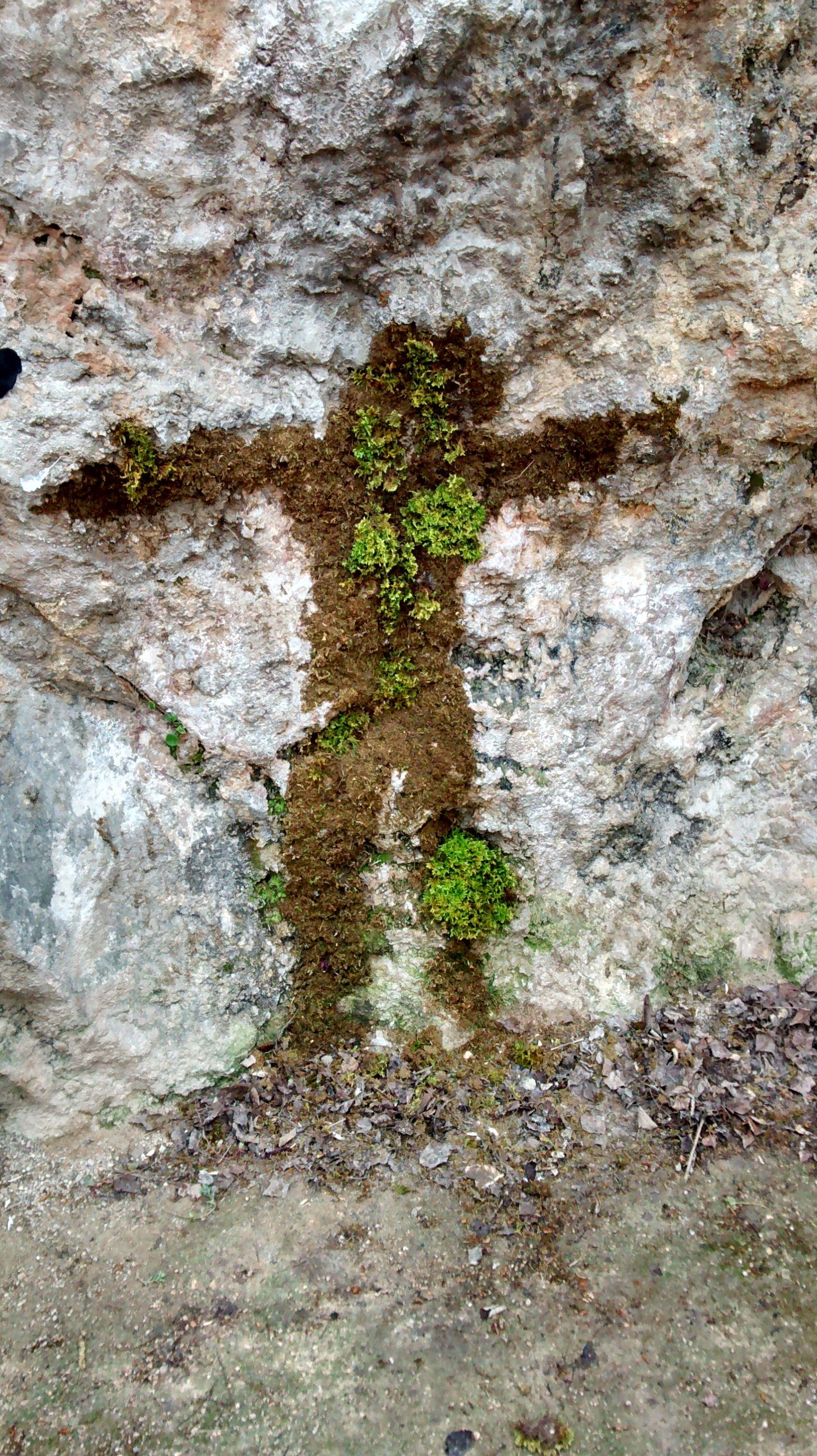 Nature Jesus? Taking Photos Cuenca