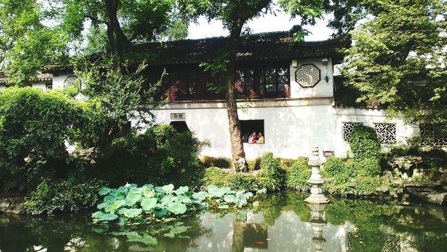 China Garden China Beauty
