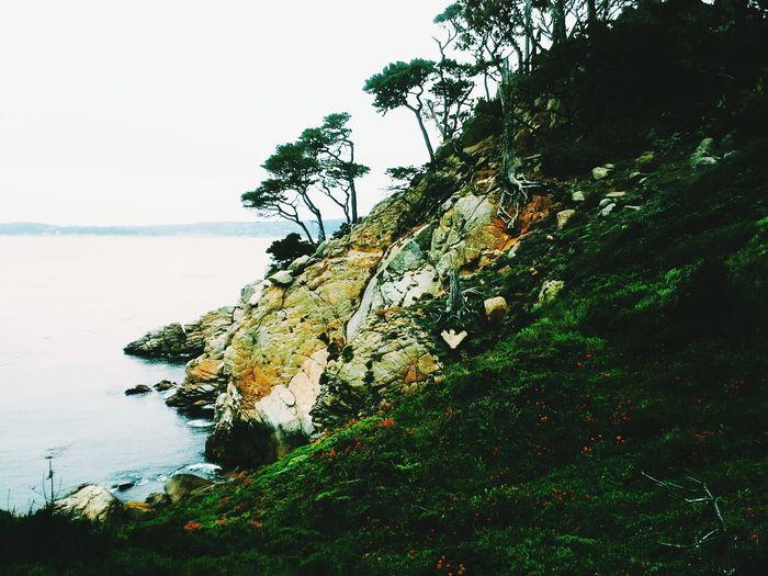 vista Ocean Monterey Pacific California Travel Coast Spring Landscappe