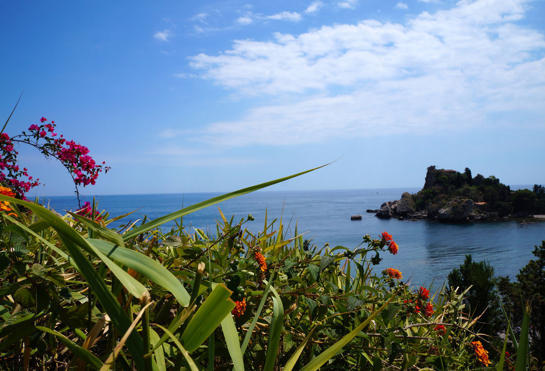Isla Bella Beauty In Nature Bella Isla Blue Cloud - Sky Day Flower Growth Horizon Over Water Nature No People Outdoors Plant Scenics Sea Sky Taormina Taormina Sicily Tranquil Scene Tranquility Water