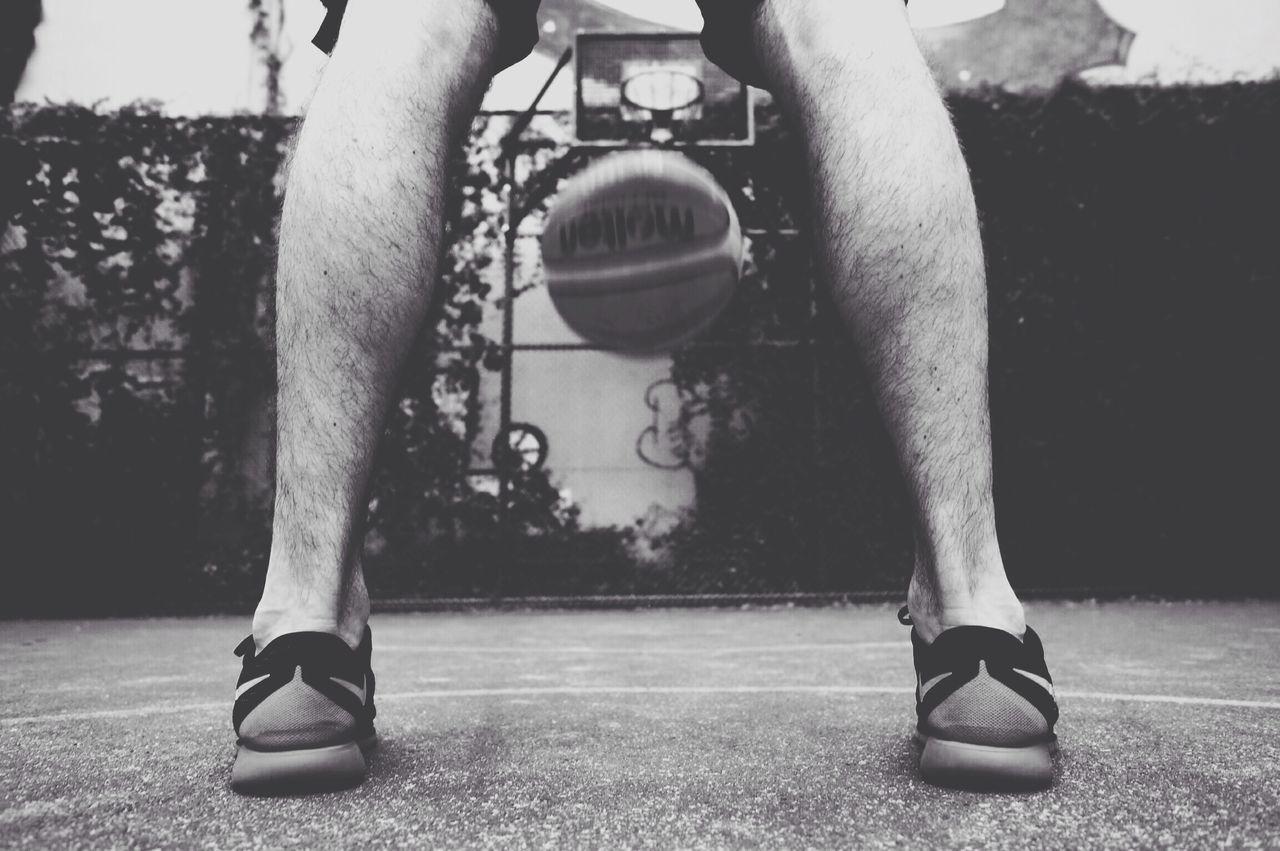 Beautiful stock photos of game, Basketball, Basketball - Ball, Basketball - Sport, Basketball Player
