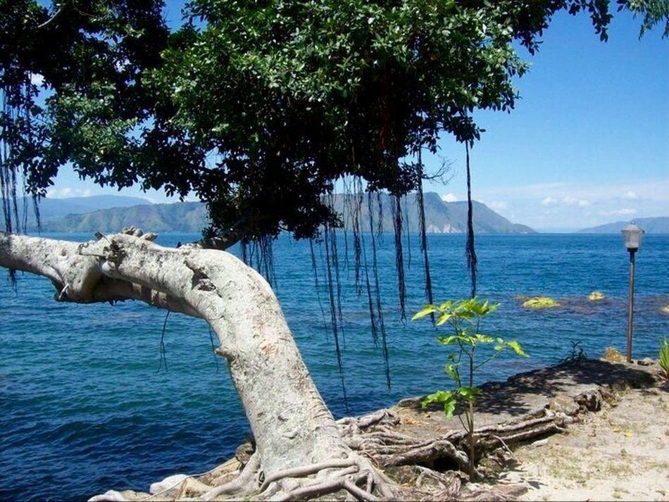 Lake Toba First Eyeem Photo