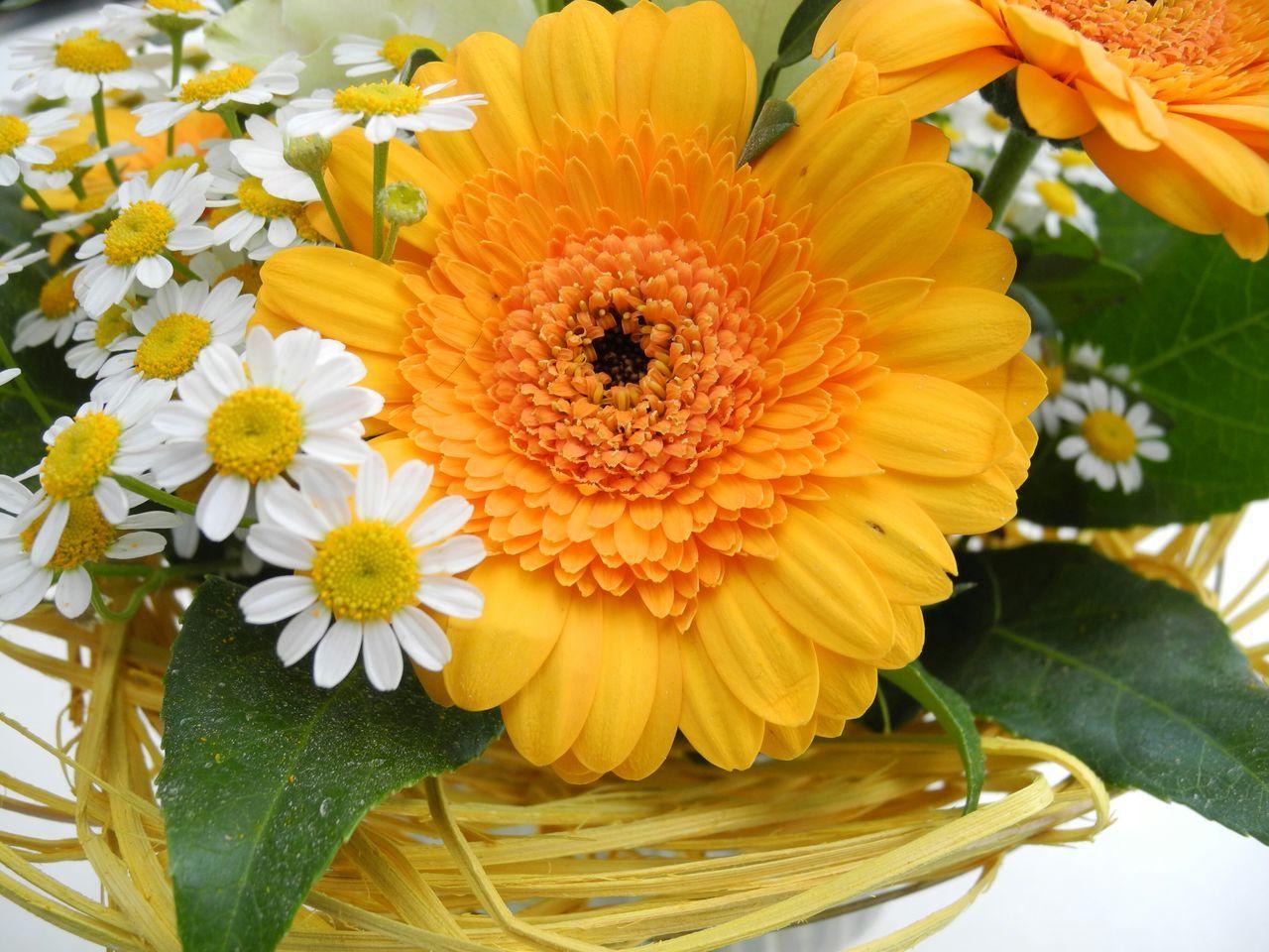 Flower Collection Bouquet Of Flowers Birthday Flowers Bouquet Flower Photography EyeEm Best Shots - Flowers Flower Bouquet