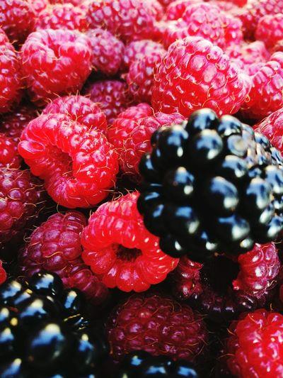 Colour Of Life Raspberries Blackberries