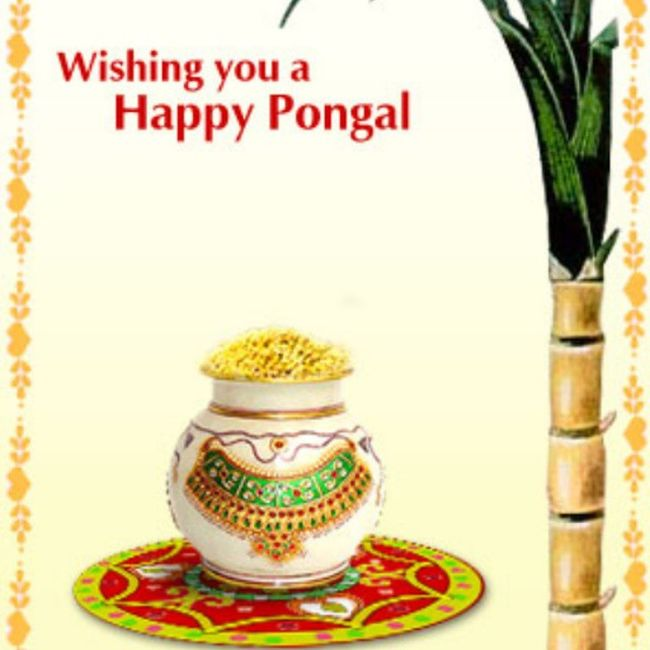 Wishing here HappyThaiPongal to everyone!! Happy and lots wishes to become true! HappyPongal Pongal !!