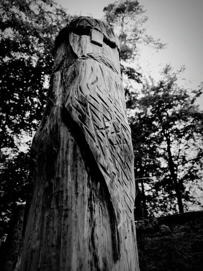Tree Tree Trunk Day History Low Angle View No People Nature Outdoors Built Structure Branch Growth Architecture Ancient Civilization Close-up EyeEm Selects Middle Ages Slavic Slavs Figure Architecture
