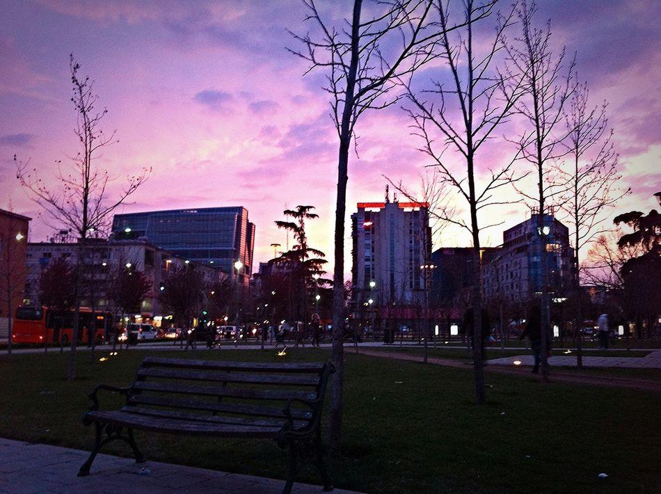 Tirana Albania I ❤️ Tirana The Places I've Been Today Beautiful Skyporn Trees TreePorn City Centre