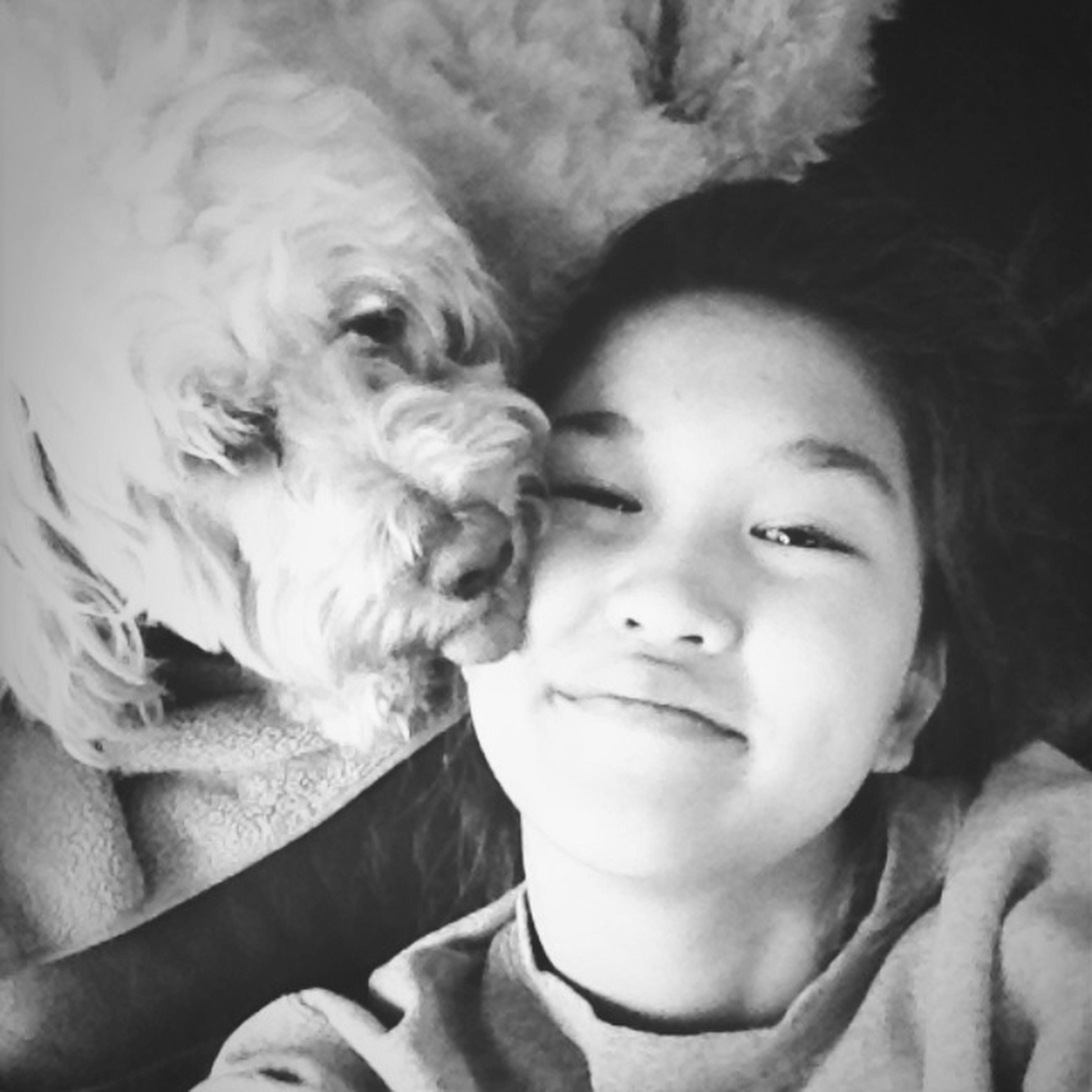 love my pup
