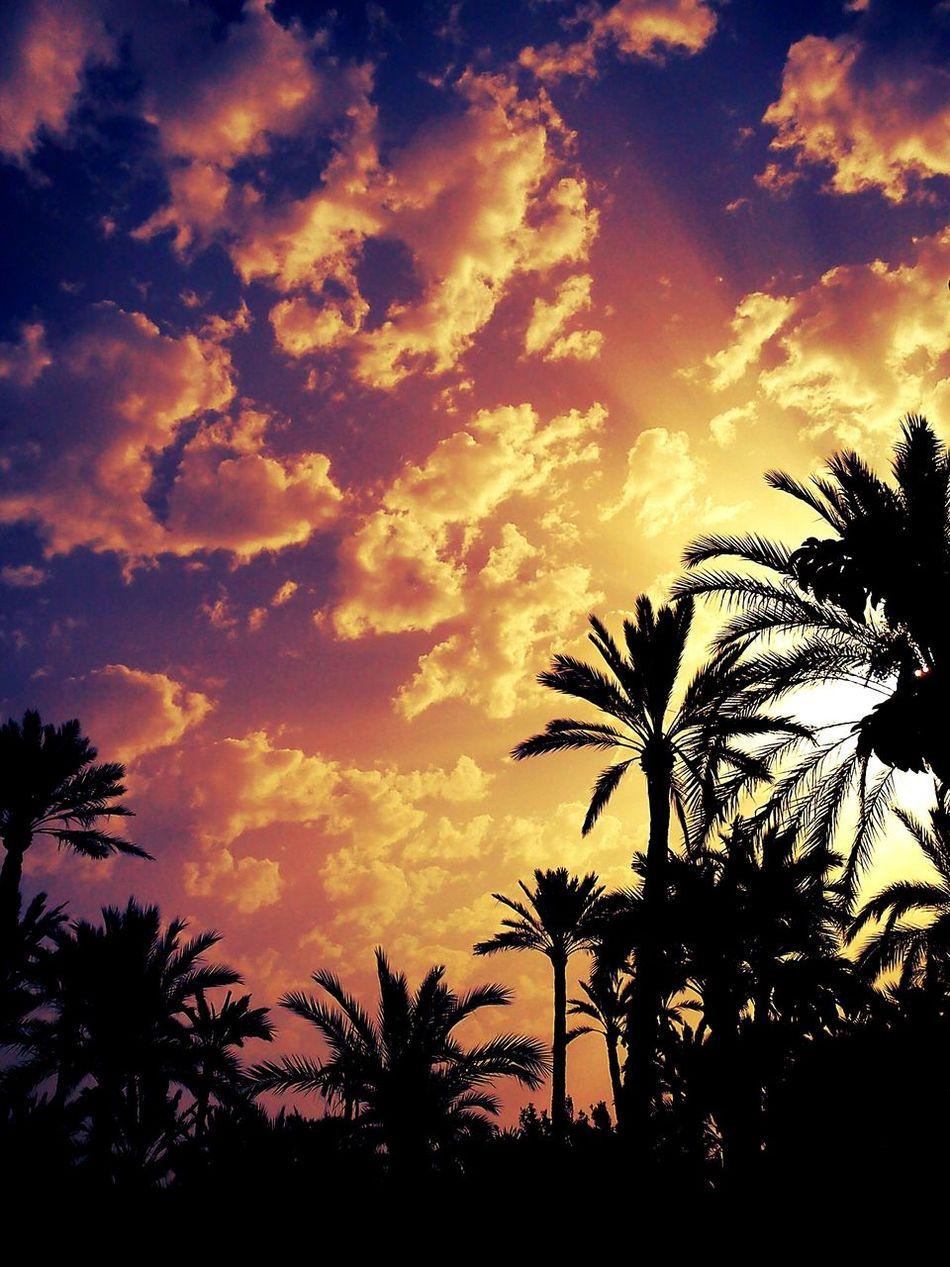 Clouds And Sky Palmeral De Elche Dramatic Sky