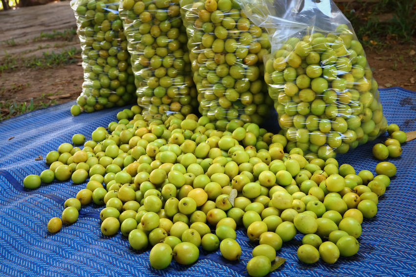 Day Food Food And Drink Freshness Fruit Green Color Healthy Eating Large Group Of Objects Market Monkey Apple No People Outdoors ลูกพุทรา