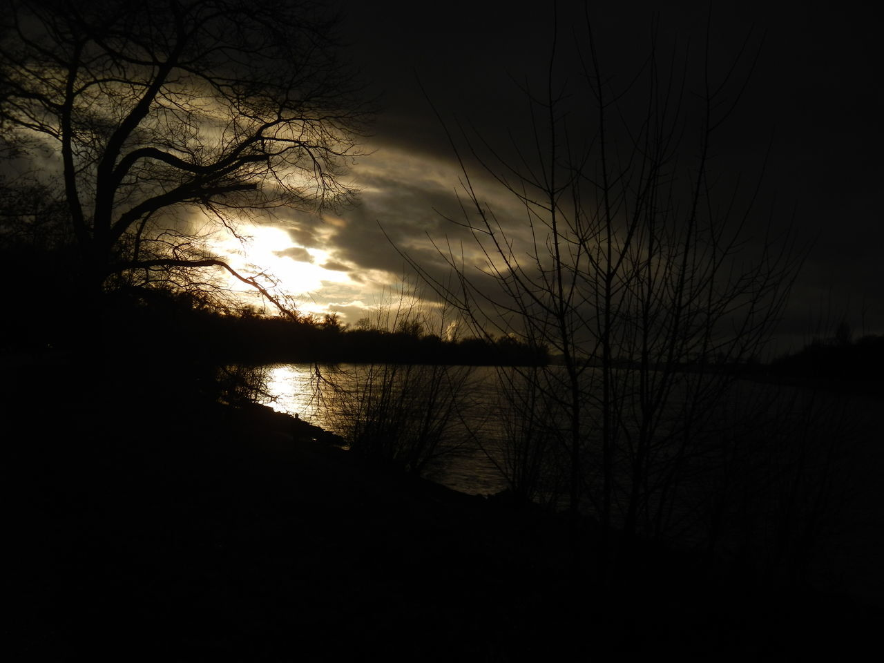 nature, silhouette, beauty in nature, reflection, sunset, tranquility, scenics, tranquil scene, no people, water, sky, outdoors, lake, tree, night