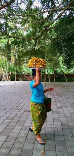 One Person Balance Day Basket Outdoors Leisure Activity Tree Standing Full Length Only Women Balance And Composure Balancing Act Bananas For Sale Traditional Art Indonesia_allshots