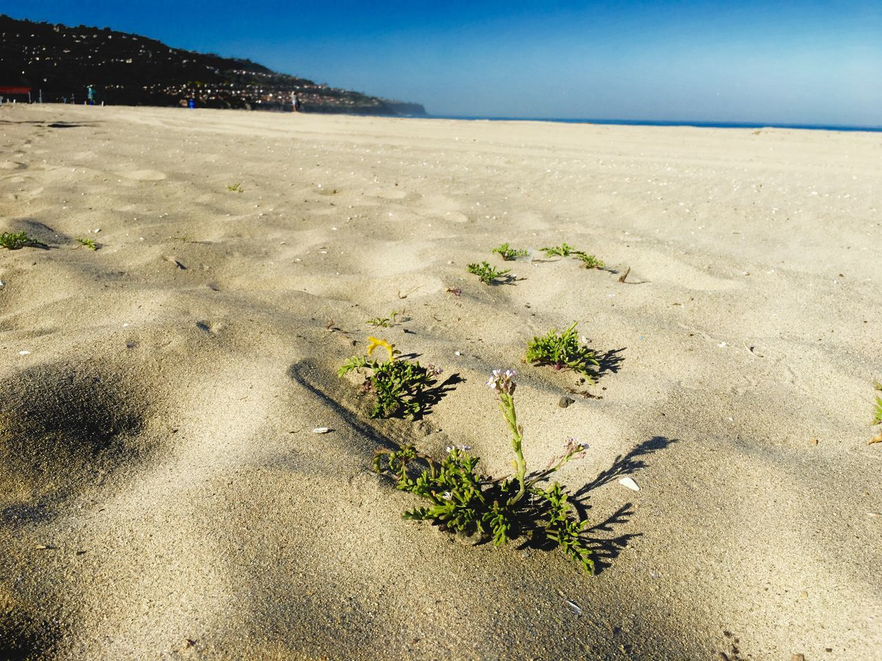 sand, beach, nature, outdoors, tranquility, no people, beauty in nature, landscape, day, sea, scenics, sky