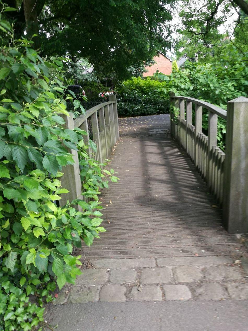 Stamford park duck pond bridge