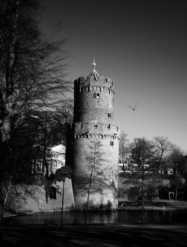 Mycity Tower Old But Awesome Atthepark Walkinthepark Old Buildings Black And White Collection  Nijmegen Dutch History Kronenburg Park