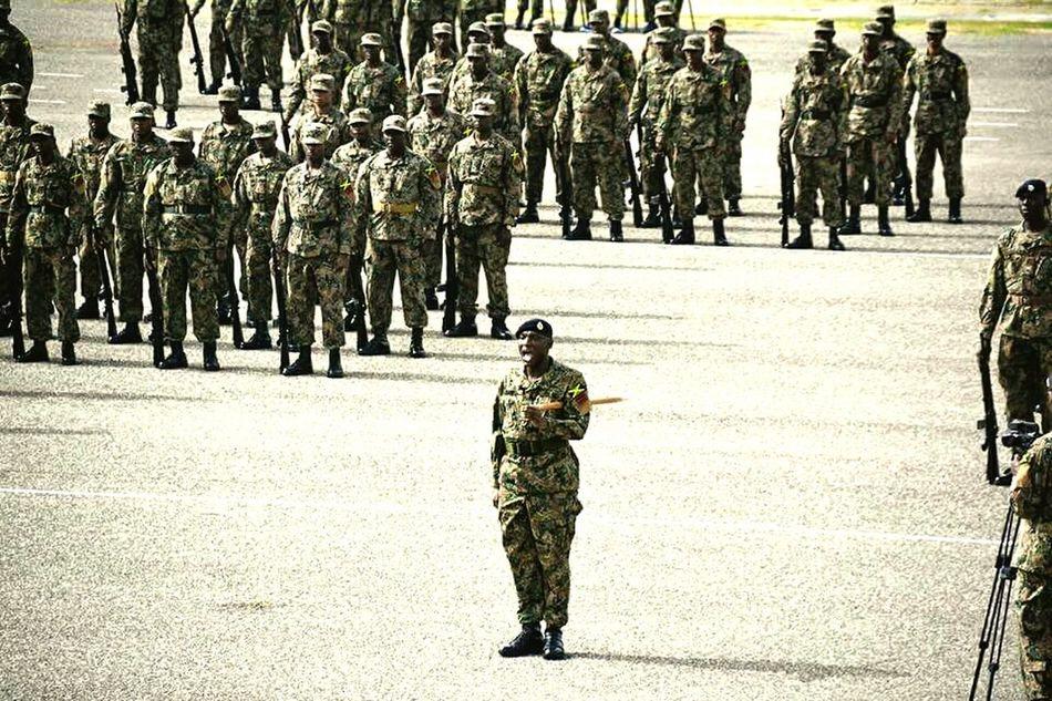 Jamaicadefenseforce Soliders Parade Hello World