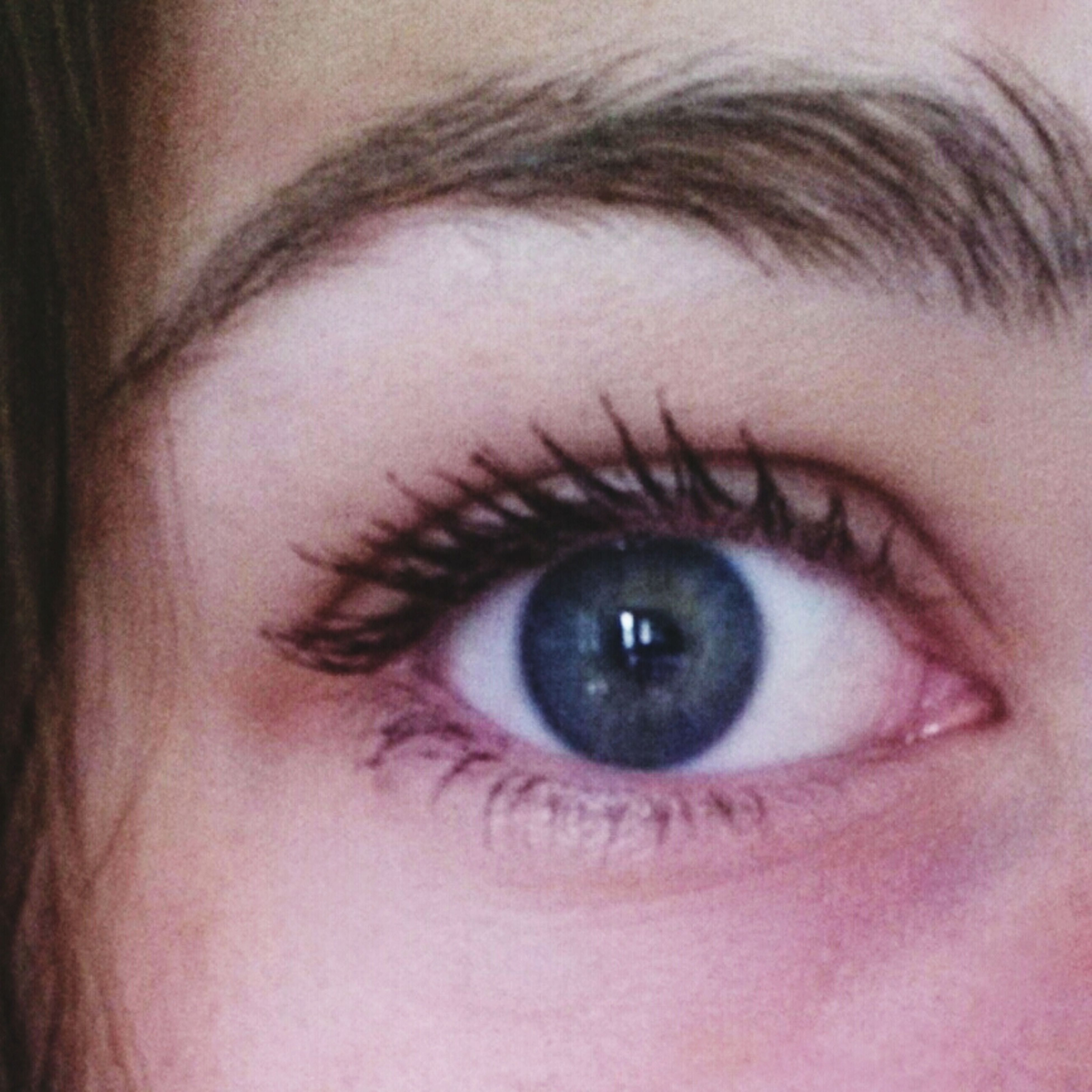 human eye, eyelash, close-up, eyesight, human face, looking at camera, part of, human skin, sensory perception, lifestyles, iris - eye, portrait, eyeball, eyebrow, headshot, person, indoors
