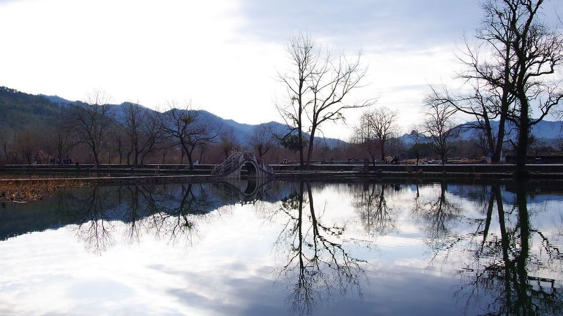 Reflection Sky Tree Nature Beauty In Nature Water Architecture