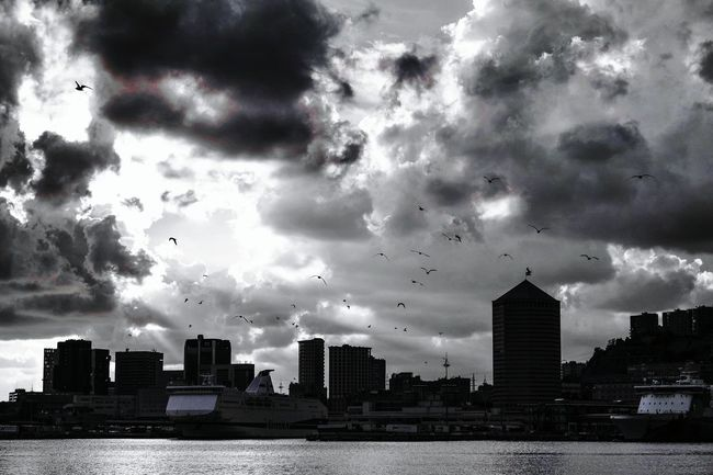 Monochrome Photography in my town Architecture Building Exterior Built Structure City Sky Cityscape Water Urban Skyline Waterfront Cloud - Sky Flying Cloud River Skyscraper City Life Cloudy Outdoors Tall - High Development Day Fresh 3 EyeEm Best Shots Open Edit Eye4photography