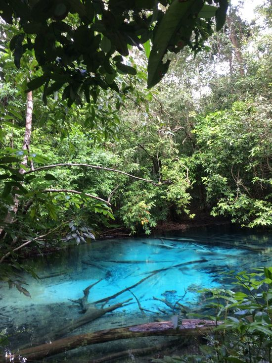 Thailand Thailand Nature Beautiful Nature Dschungel Thailand Dschungel Emerald Cave Blue Sea Blue Sea And Clear Water Blue Sea And Trees