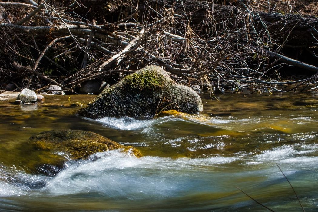 Photography In Motion Canon Powershot G9 Canon Photoshopexpress Slow Shutter Sierra Nevada California Stanisluas National Forest Jenness Park Water River