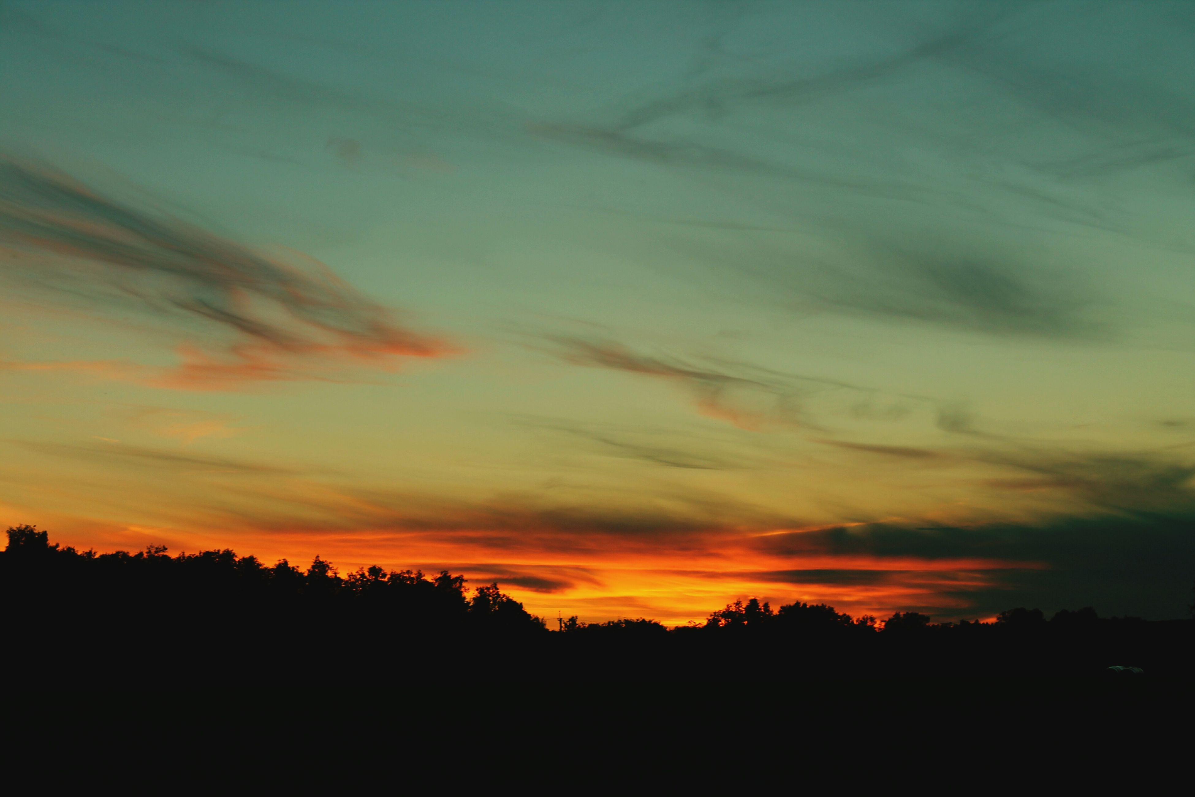 sunset, silhouette, nature, sky, tranquil scene, no people, scenics, tranquility, beauty in nature, tree, cloud - sky, outdoors