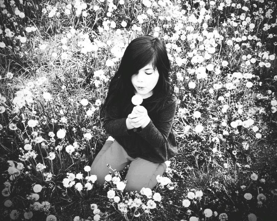 Silverton, Colorado Black And White Wishes Field Of Dreams Field Of Wishes Black And White Photography