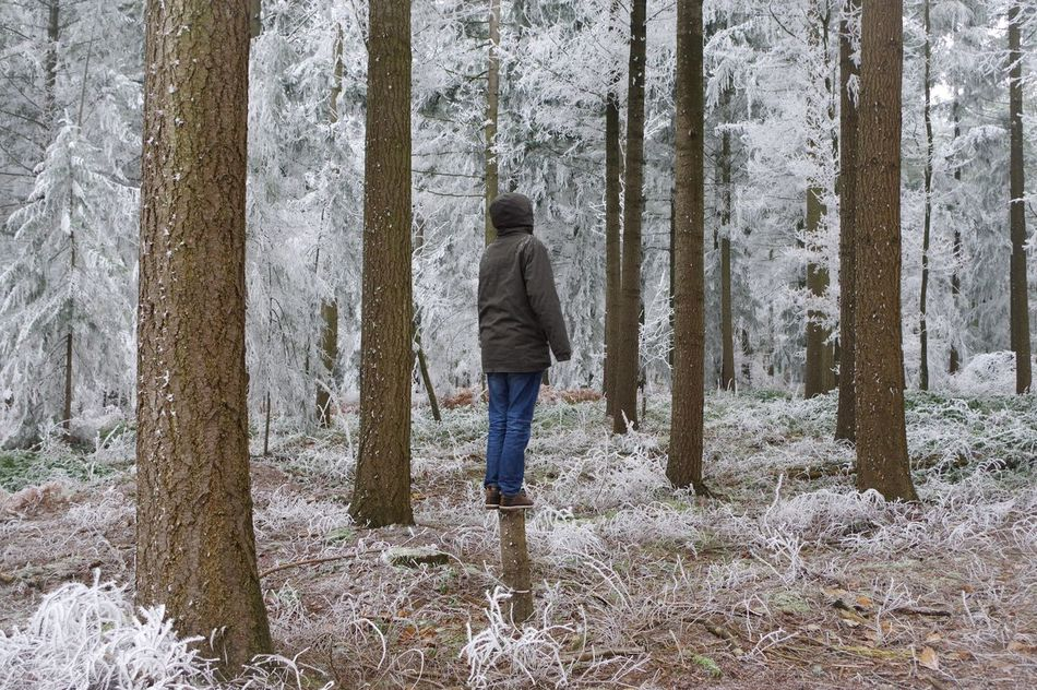 Forest Full Length Tree Rear View Tree Trunk One Person One Man Only Jeans Cold Temperature Snow Winter Only Men Day Nature People Adult Outdoors Men Branch