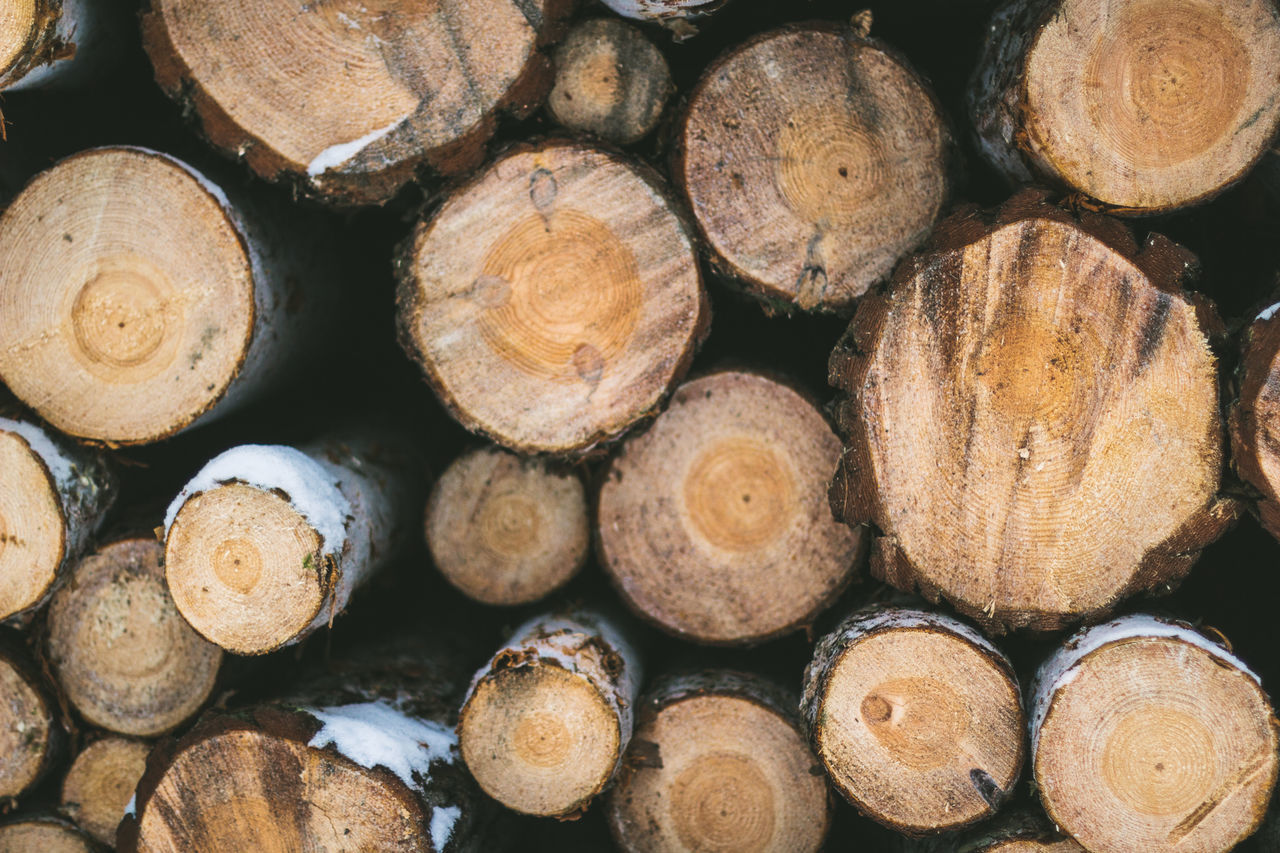 firewood, stack, log, timber, woodpile, forestry industry, heap, lumber industry, deforestation, abundance, backgrounds, full frame, fuel and power generation, environmental issues, large group of objects, fossil fuel, textured, pile, wood - material, arrangement, no people, close-up, outdoors, day